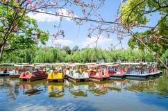 Pedalo fartyg som parkerar i den gröna sjön, parkerar, det också, bekant som Cui Hu Park är en av de mest härlig parkerar i den K Royaltyfri Bild