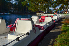 Pedalo on a lake in forest. Plastic pedalo in a row, on a lake. Nature background royalty free stock image