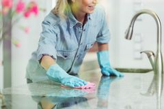 Free Pedantic Woman And Household Cleaning Stock Image - 100656641