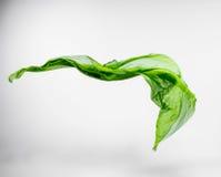 Pedazo abstracto de vuelo verde de la tela Fotografía de archivo libre de regalías
