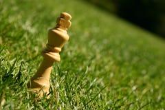 Pedazo de ajedrez del rey en hierba Fotografía de archivo