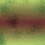 Pedazo de cuero verde del reptil Imágenes de archivo libres de regalías