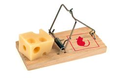 Pedazo de Gruyère en una ratonera en un fondo blanco fotografía de archivo libre de regalías