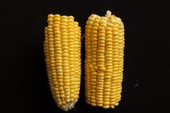 Pedazo de maíz Fotos de archivo