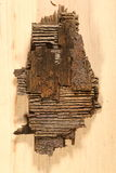 Pedazo de madera marchitada Fotos de archivo libres de regalías