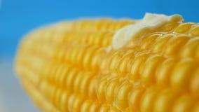 Pedazo de mantequilla que derrite en maíz hervido amarillo almacen de metraje de vídeo