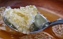 Pedazo de peine de la miel con la miel en la cuchara Fotos de archivo libres de regalías