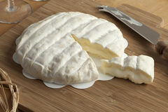 Pedazo de queso de Paja del dla de Tuma del italiano Fotografía de archivo libre de regalías