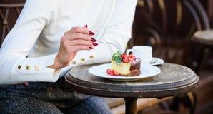 Pedazo de torta con la baya roja Comida gastr?noma de la receta Rebanada de la torta en la placa blanca Torta con el postre delic imagenes de archivo