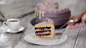 Pedazo de torta hecha en casa del ar?ndano almacen de video