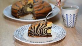 Pedazo de torta de la `` cebra `` con el esmalte del chocolate Coma la cebra de la torta almacen de video