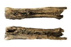 Pedazo de tronco de árbol Foto de archivo libre de regalías