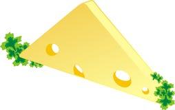 Pedazo de un queso con perejil Foto de archivo