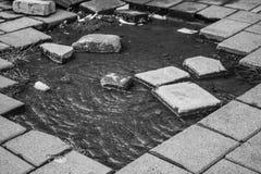 Pedazo del agua Imagen de archivo libre de regalías