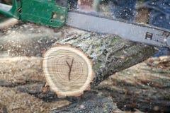 Pedazo del corte del hombre de madera con la motosierra. Fotos de archivo