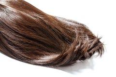 Pedazo del pelo de Brown imagenes de archivo