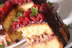 Pedazo delicioso de torta de la frambuesa en una macro de la placa horizontal imagen de archivo libre de regalías