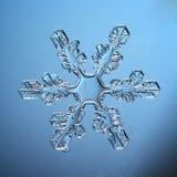 Pedazo macro del copo de nieve cristalino natural de hielo Imágenes de archivo libres de regalías
