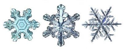 Pedazo macro del copo de nieve cristalino natural de hielo Fotos de archivo libres de regalías