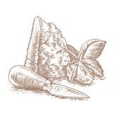 Pedazo y migajas del queso duro Imagen de archivo