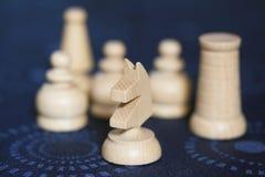 Pedazos de ajedrez blancos Fotografía de archivo