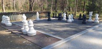 Pedazos de ajedrez en el parque foto de archivo libre de regalías
