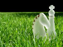 Pedazos de ajedrez en hierba imagenes de archivo