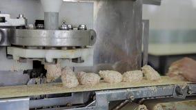 Pedazos de caída tajada de la carne del pollo en la banda transportadora de la fábrica metrajes