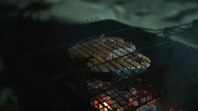 Pedazos de calor red delicious de los pescados sobre un fuego abierto en la parrilla, por la tarde Cámara lenta 1920x1080 almacen de metraje de vídeo