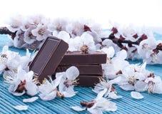 Pedazos de chocolate cubiertos con los brotes de flores Imagen de archivo