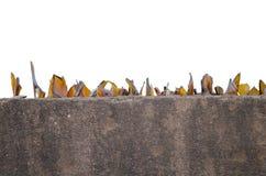 Pedazos de cristal en la cerca de la casa Fotos de archivo libres de regalías