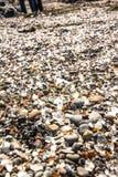 Pedazos de cristal en la playa de cristal, Fort Bragg Foto de archivo libre de regalías