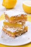 Pedazos de empanada del limón Imagen de archivo
