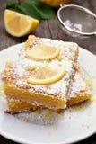 Pedazos de empanada del limón Foto de archivo libre de regalías