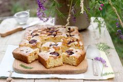 Pedazos de empanada de la fruta con los pedazos de ciruelos y de melocotón y de un ramo de flores en una tabla de madera Estilo r Fotos de archivo libres de regalías