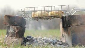 Pedazos de la carne del pollo que son fritos en parrilla del carbón de leña y el goteo gordo en los carbones calientes metrajes