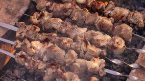 Pedazos de la carne en pinchos Pinchos en el carb?n de le?a Carne cocinada en un fuego El acampar y el cocinar en naturaleza