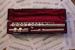 Pedazos de la flauta Foto de archivo