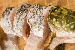 Pedazos de pescados frescos, lucio Fotos de archivo libres de regalías