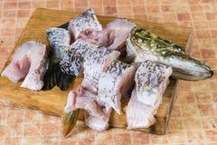 Pedazos de pescados frescos, lucio Fotografía de archivo
