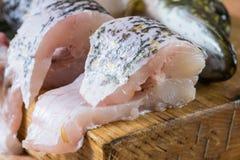 Pedazos de pescados frescos, lucio Imagen de archivo libre de regalías