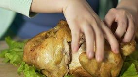 Pedazos de rasgado de la mujer gorda de carne del pollo asado, comiendo con las manos almacen de video
