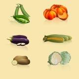 Pedazos de verduras: guisantes, col, patatas, maíz ilustración del vector