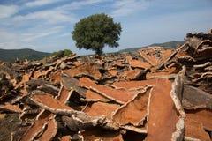 Pedazos del corcho en un depósito en Italia imágenes de archivo libres de regalías