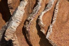 Pedazos del corcho en un depósito en Italia fotos de archivo