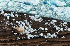 Pedazos del hielo al borde de un lago congelado Fotos de archivo libres de regalías