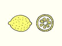 Pedazos del limón Fotografía de archivo