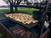 Pedazos del pollo en una parrilla al aire libre de la barbacoa Fotos de archivo libres de regalías
