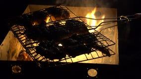Pedazos jugosos de la barbacoa de la noche de carne que cuecen al vapor en los carbones