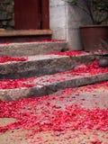 Pedazos rojos del papel de los fuegos artificiales después de la celebración china del Año Nuevo Fotografía de archivo